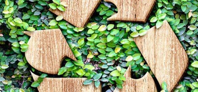 Recycling von Biokunststoff