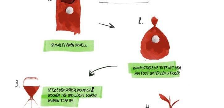 Renewable compost bag