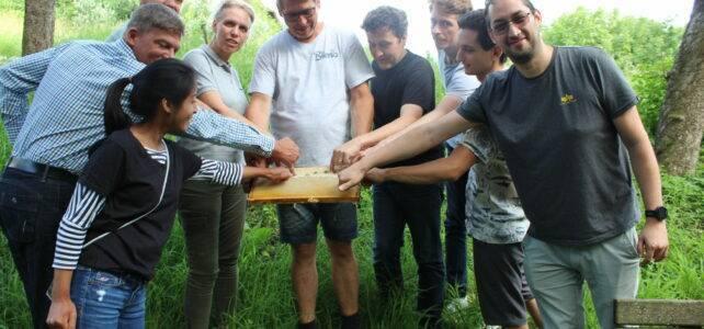 Die Naku Bienenpatenschaft - Honig