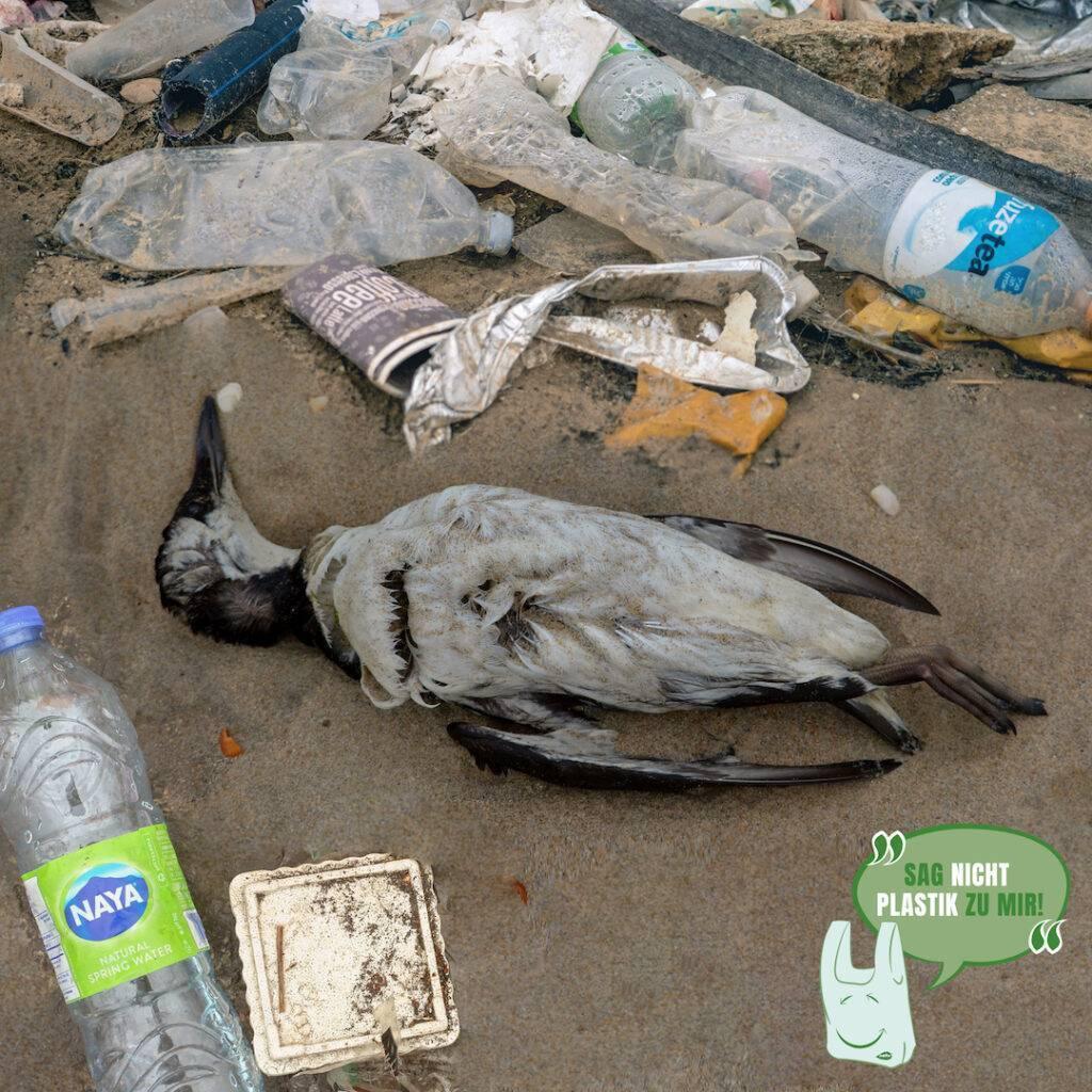 Kunststoffabfälle verschmutzen Strände
